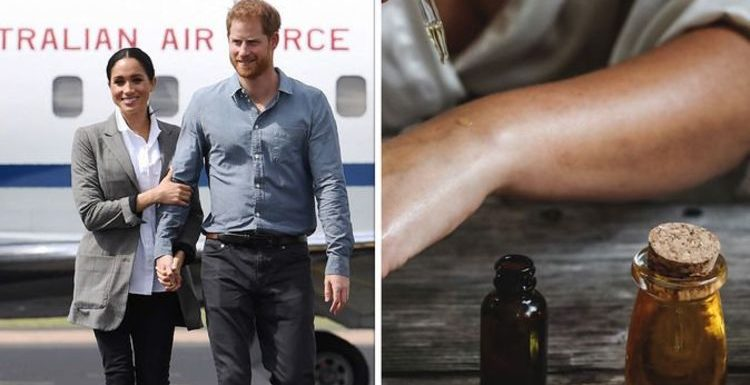 Meghan Markle's travel item she 'can't live without' when flying – 'not very glamorous'