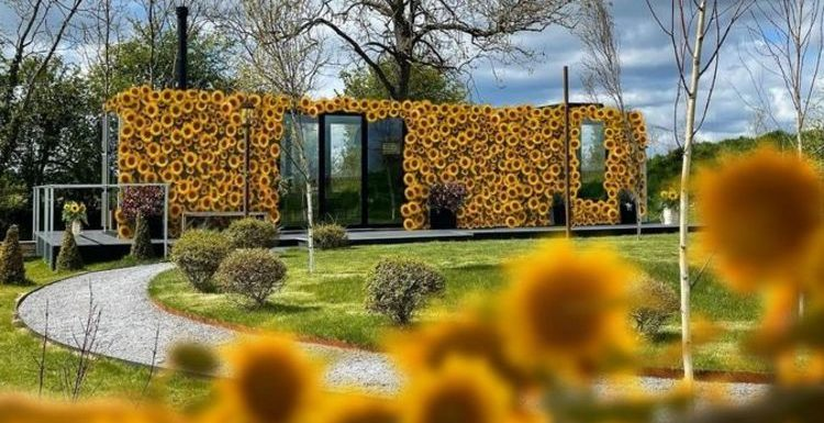 Stay in the world's first sunflower hotel in North Yorkshire for a unique staycation