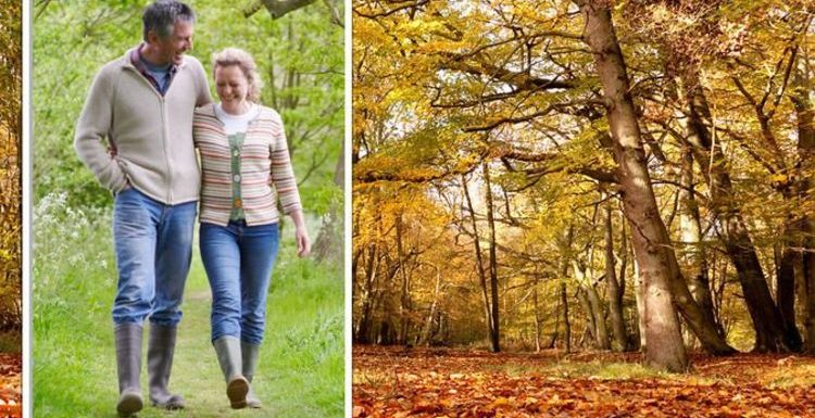 'Incredible' outdoors hidden gems to take on the changing colours – 'this place is a dream