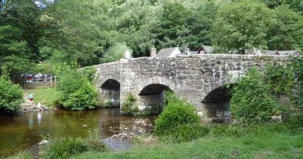 Explore stunning British woodland with your dog by taking trip to Fingle Bridge