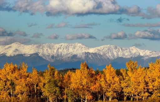 Fall foliage update: Peak #Fallorado is coming soon in northern Colorado