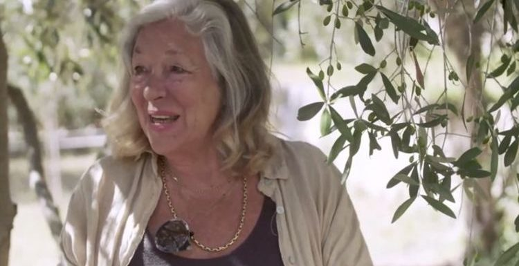 'Changed my life': Carol Drinkwater shows the 'playground of the rich' in Provence